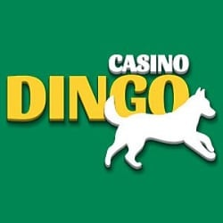 Dingo Games 200 freespins and 4000 EUR welcome offer in 4-tier bonuses